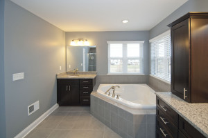 Alternative Master Bath
